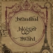 beautifulbloggeraward_alok singhal