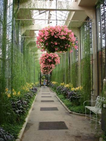 conservatory longwood gardens
