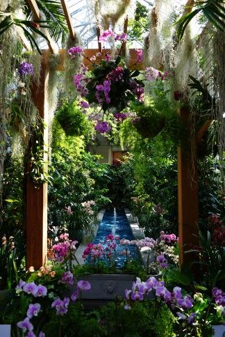 dsc04468 - Botanical Garden Washington Dc