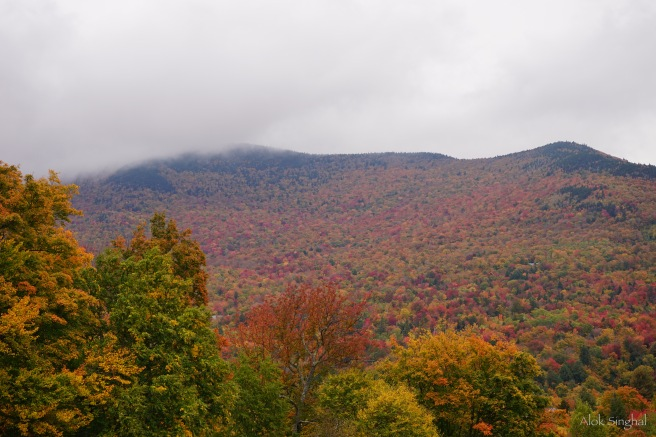 fall-foliage-in-usa