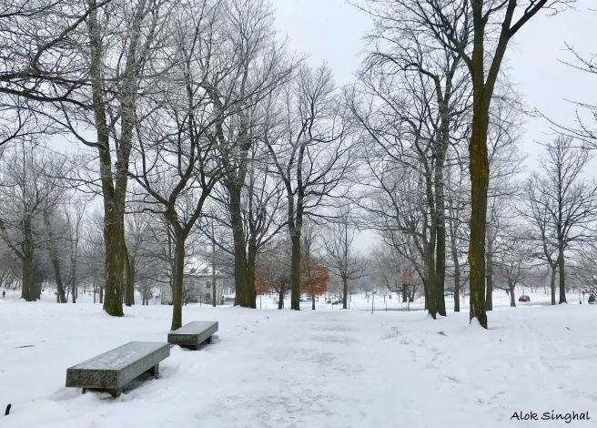 best views of montreal winter