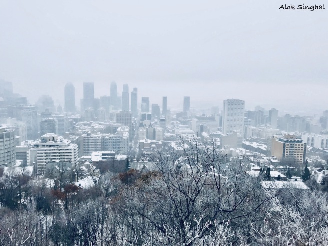 best views of montreal