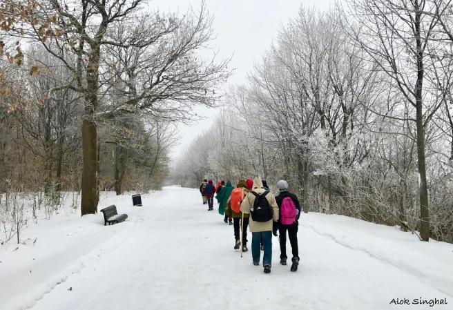 skiiing in montreal